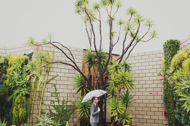 groom, umbrella