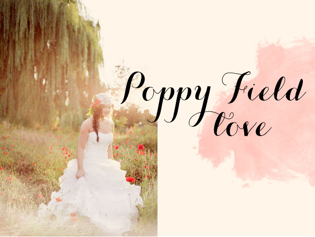 poppy field bridal session
