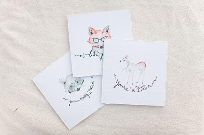 fox, raccoon illustration