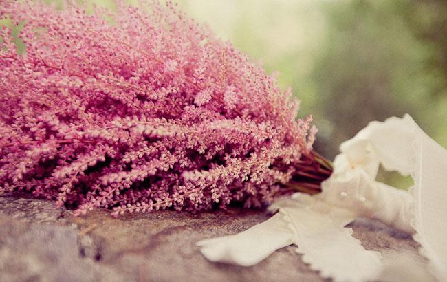 pink bouquet Astilbe