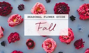 fall_flower_guide