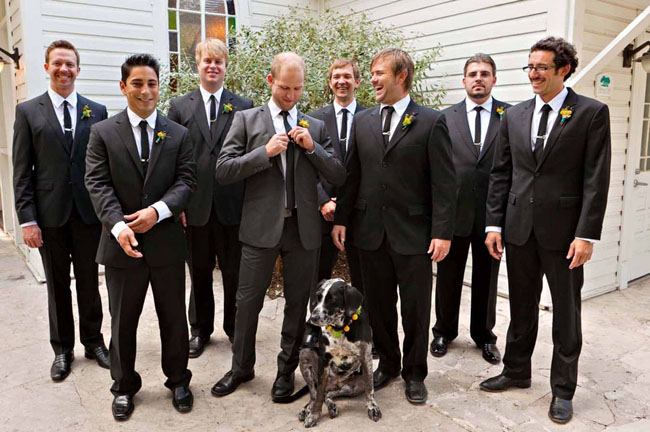 groomsmen and dog