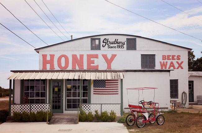 honey shop engagement