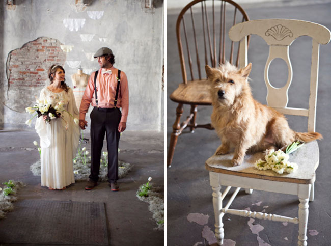 warehouse elopement, dog