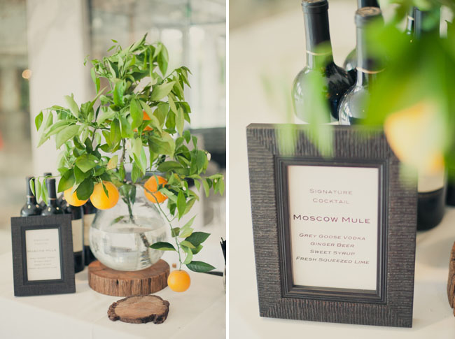 orange tree and wine