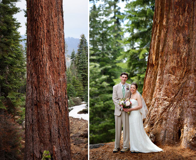sequoia-wedding-02