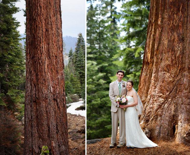 Sequoia Wedding 02