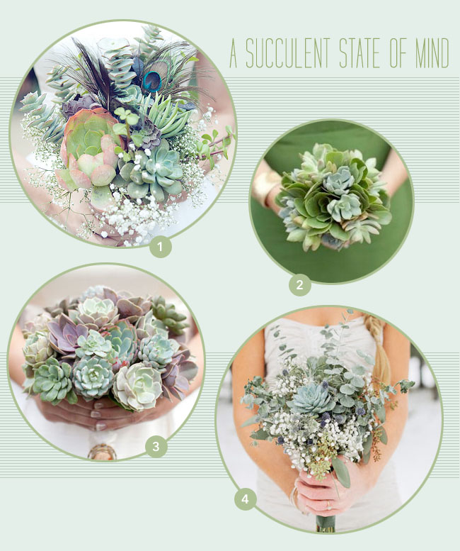Get To Know a Flower: Succulents - Green Wedding Shoes