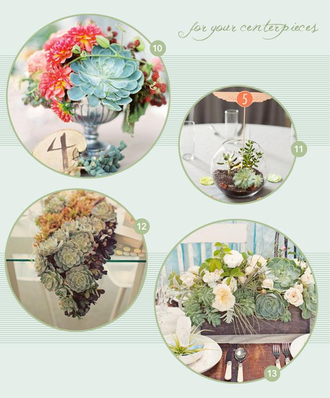 succulent flowers centerpieces