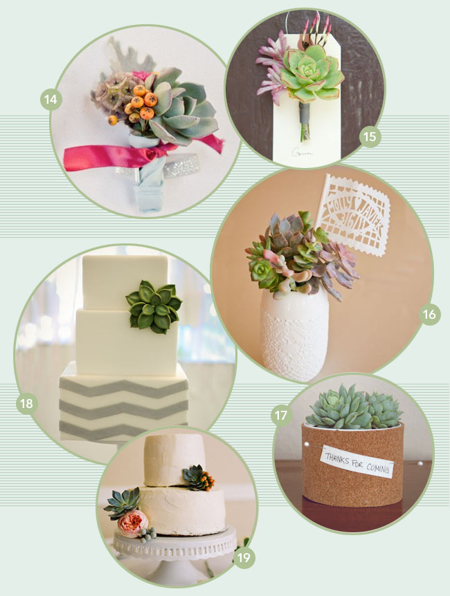 succulent flowers favors