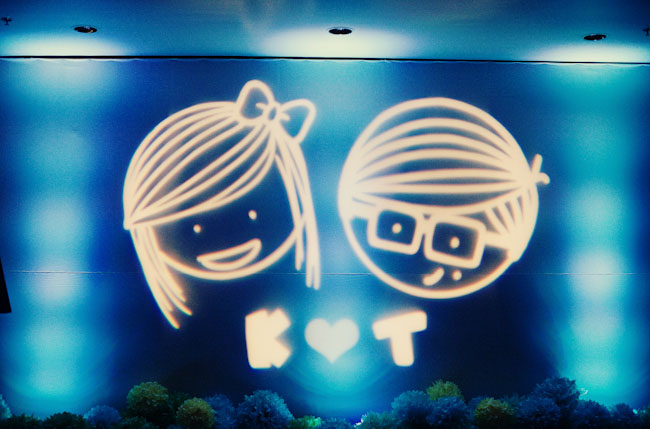 bride and groom cartoon projection