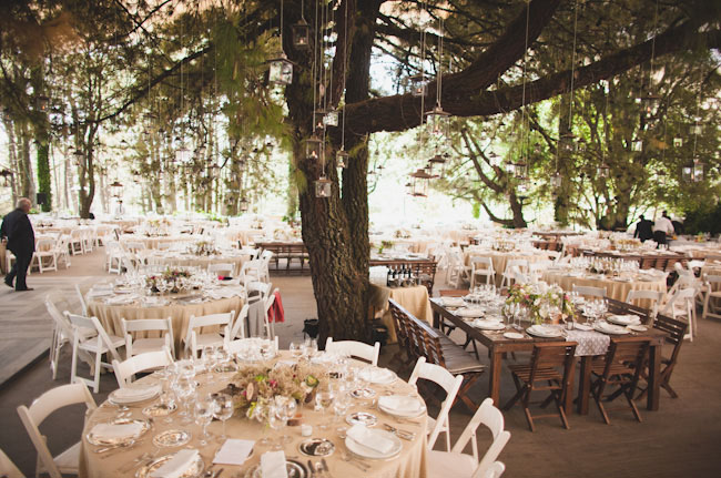 mexico wedding in the woods