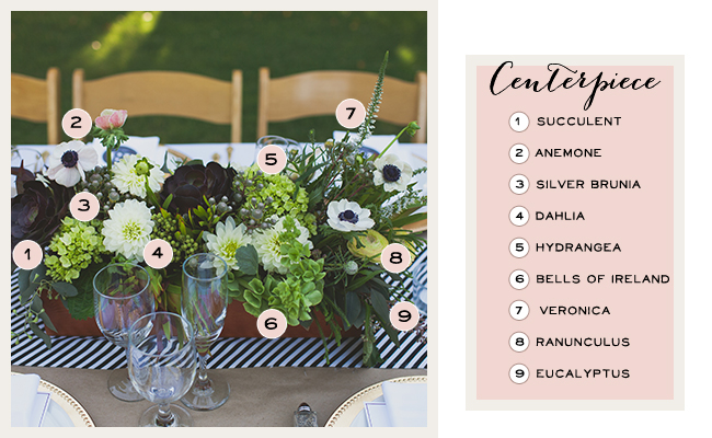 centerpiece breakdown