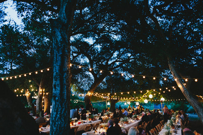 Great gatsby rustic wedding erin parker part 2 - Luces para arboles ...