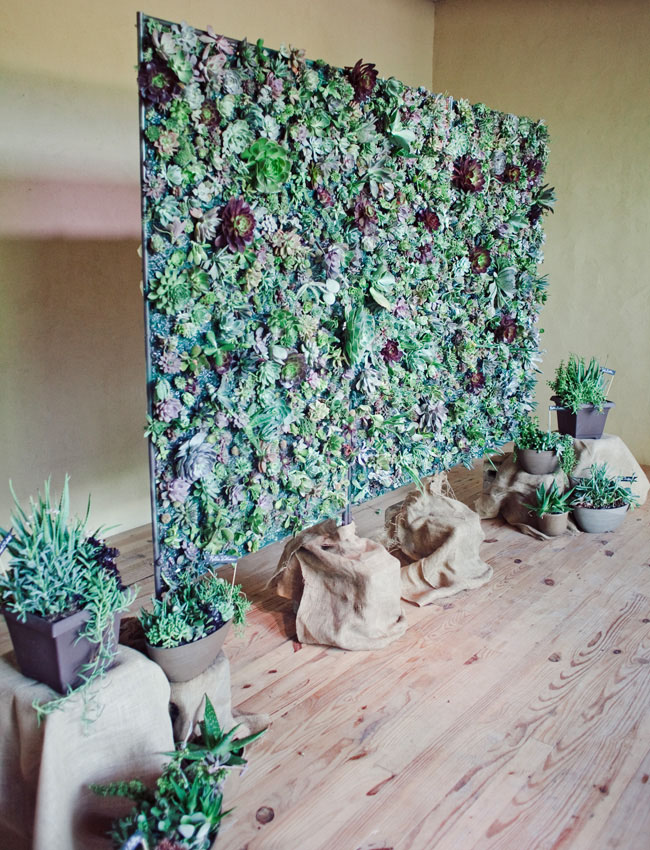 succulent wall wedding ceremony