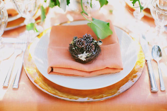 nest pinecone place setting