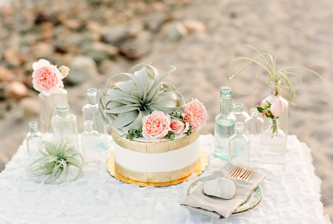 airplant cake topper