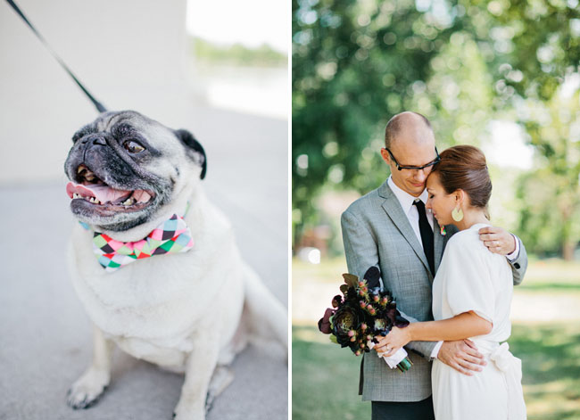 pug wedding dog