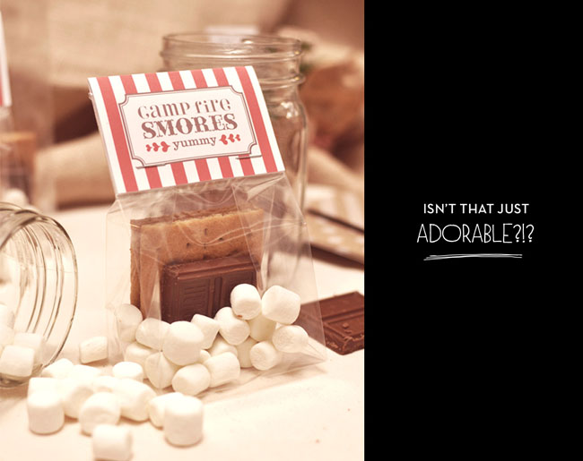 DIY S'mores and hot cocoa