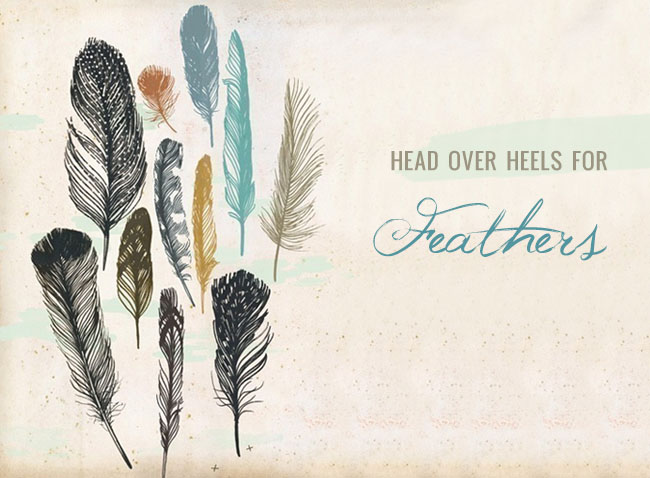 head over heels for feathers