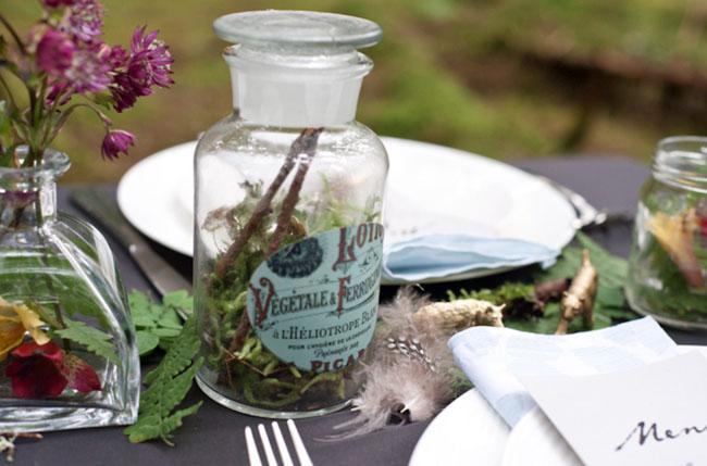 moss in a jar