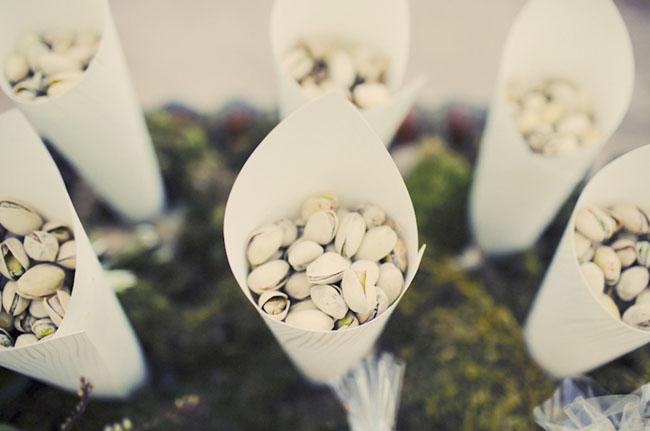 pistachio favors