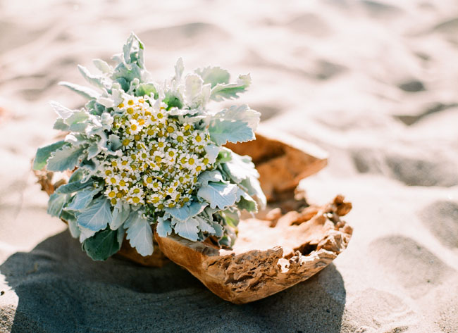bouquet on driftwood
