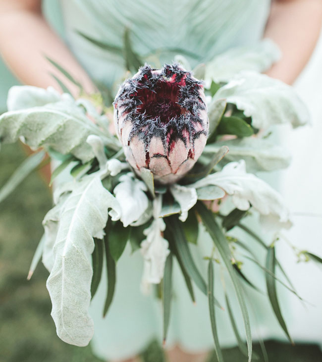 protea bouquet