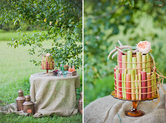 rhubarb wrapped cake