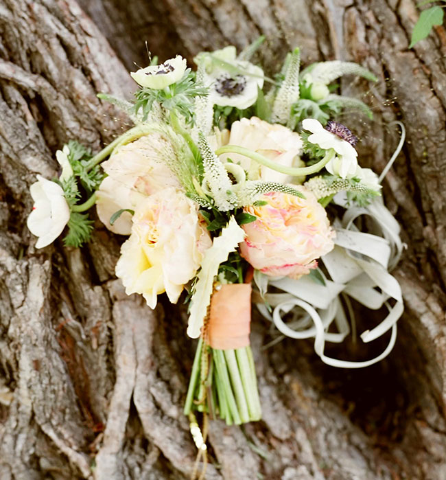 whimsical blush bouquet airplant