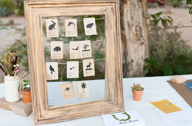 animal place cards