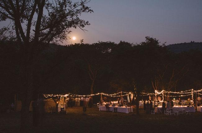 twinkle lights reception