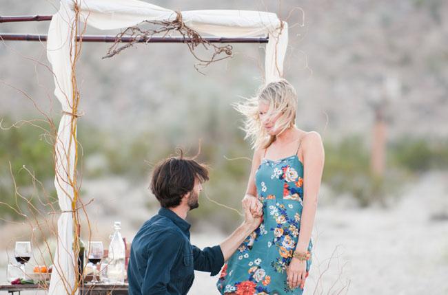 desert proposal