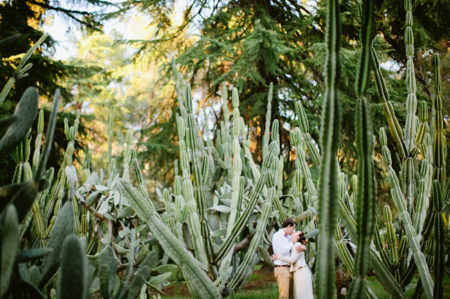 bride and groom cactus