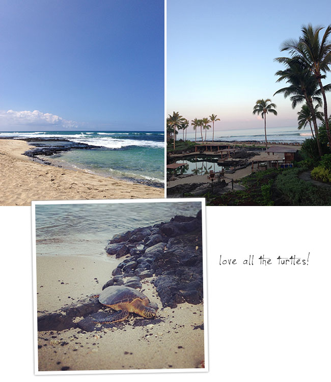 hawaii-big-island-05