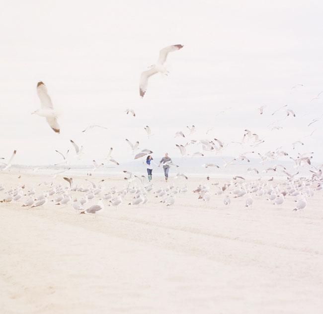 engagement at beach with birds
