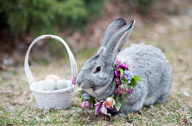 Springtime Easter Inspiration