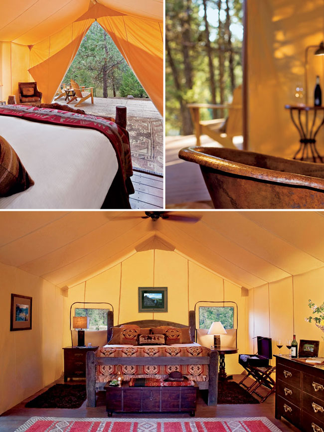 paws up honeymoon glamping