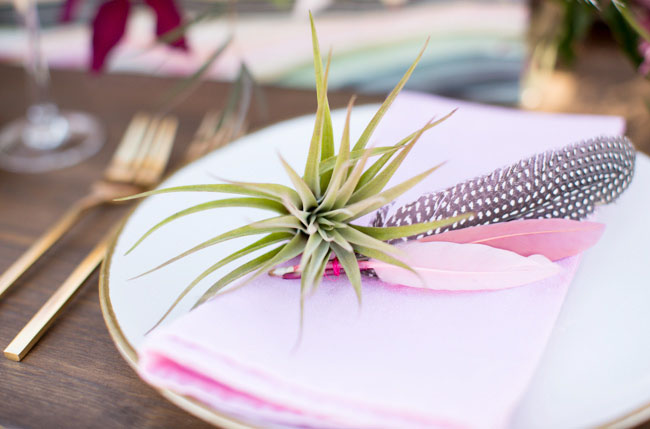 succulent and feather place setting