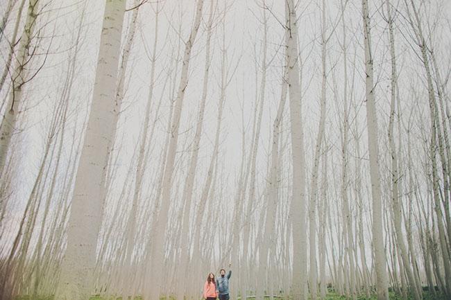 white_trees_engagement