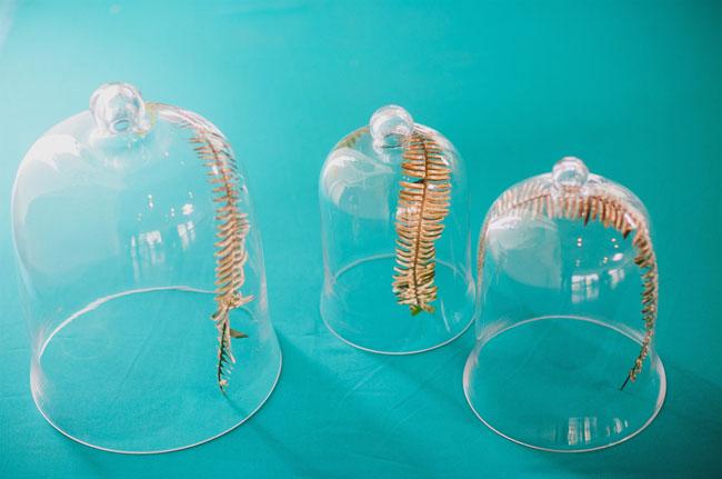 gold ferns