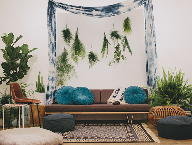 fern lounge area