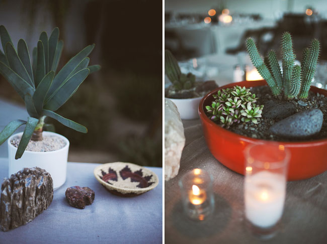 succulent bowl centerpieces