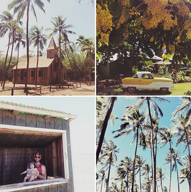 lanai_adventures