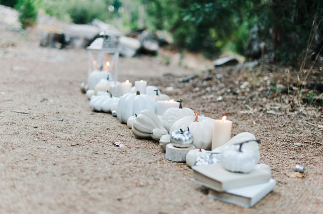 white pumpkin walkway