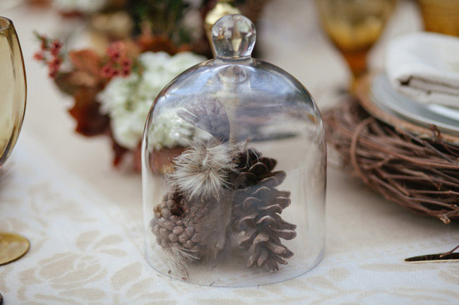 pinecone in globes