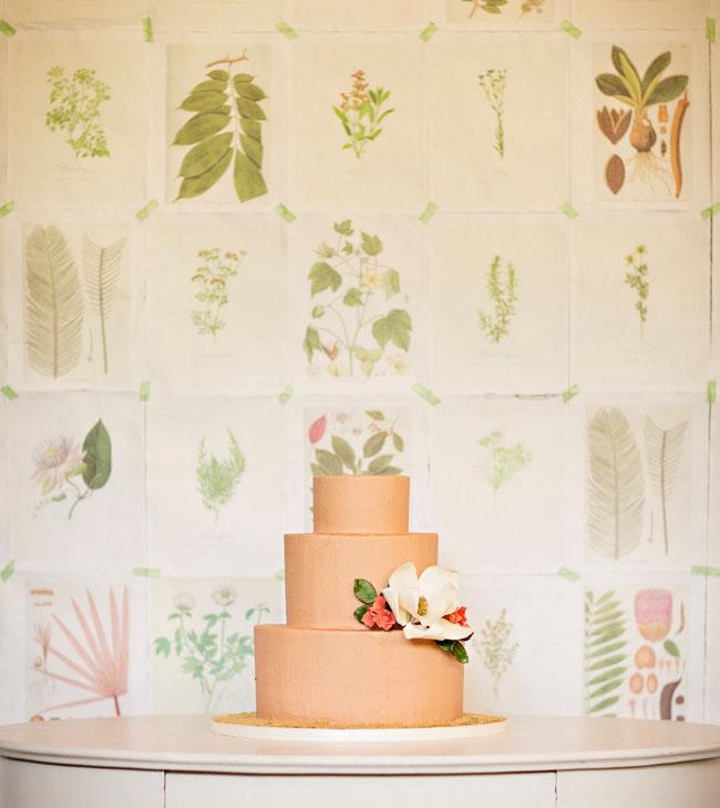 botanical dessert backdrop