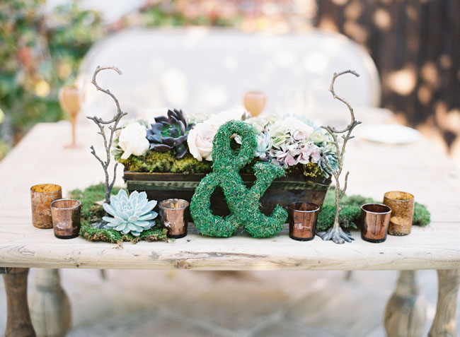 succulent and moss wedding table
