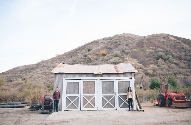 old shed engagement