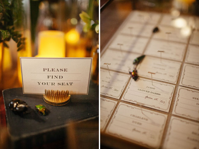 science bug escort cards